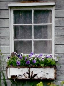 The window box leading to Jack's studio