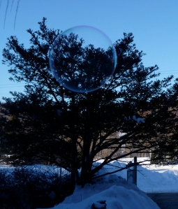 A frozen bubble!